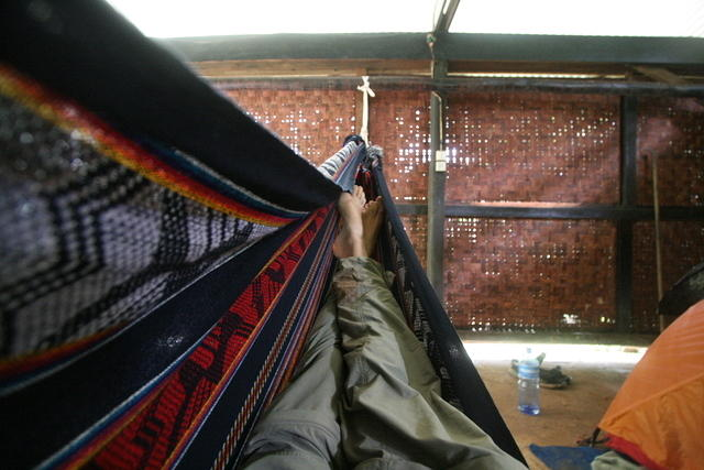 Picture of hammock.