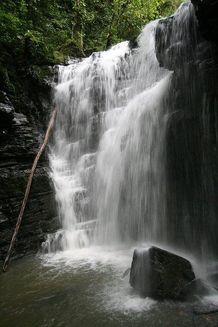 Picture of waterfall.