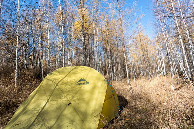 Picture of tent.