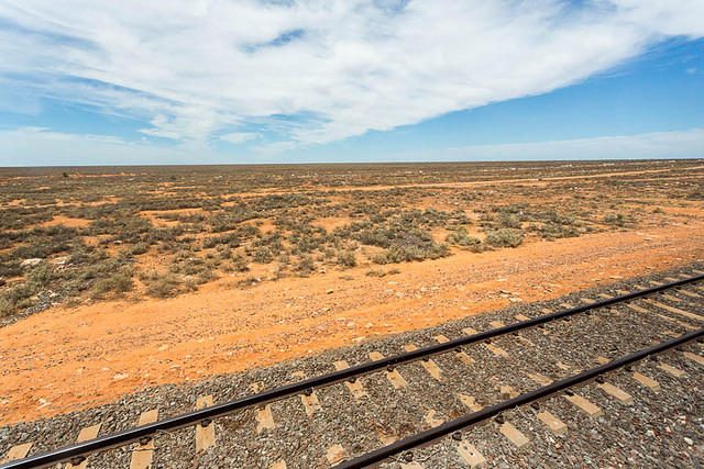 Picture of Indian Pacific Train.