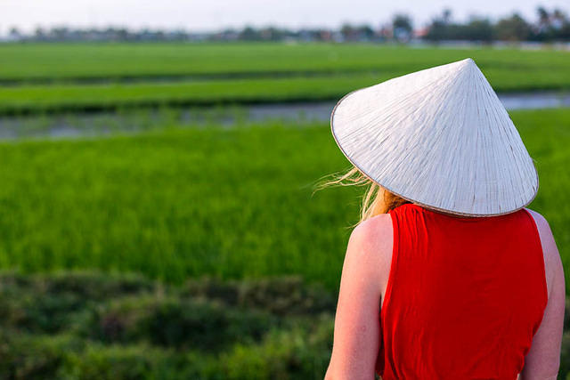 Picture of rice farmer.