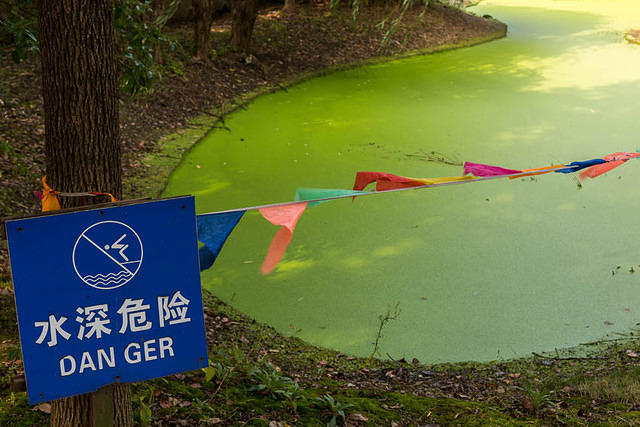 Zhouzhuang - Picture of pond and sign.