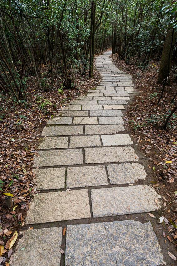 Zhangjiajie: Picture of path.