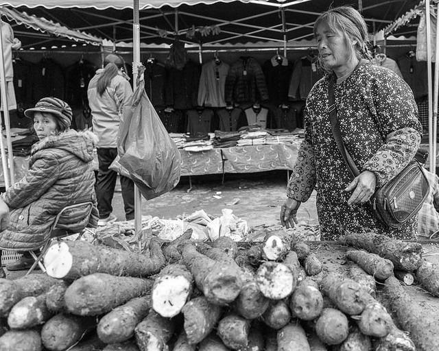 Fu Ling - Picture of cassava.