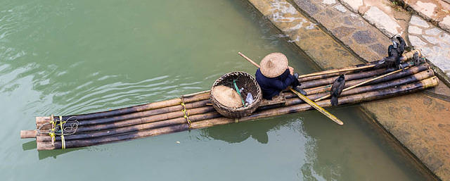 Yangshuo: Picture of cormorant fisherman.
