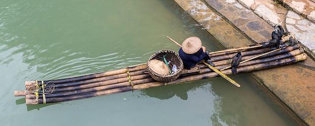 Yangshuo: Picture of cormorant fisherman.