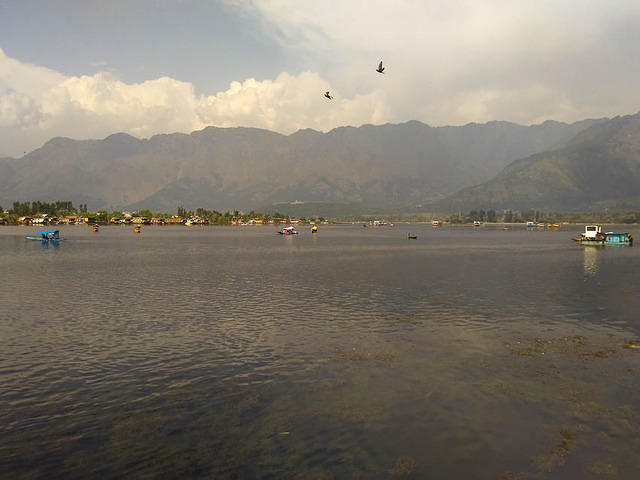 India: Picture of the lakefront in Srinagar, India.