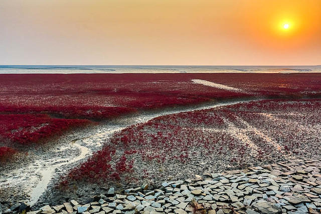 Beijing: Picture of sunset over Red Beach..
