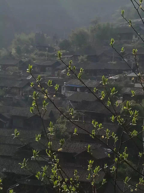Li Song Mei: Picture of village.
