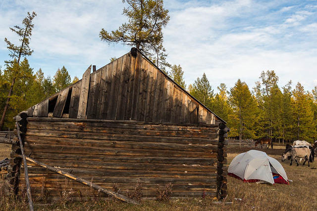 Mongolia: Picture of cabin campsite.