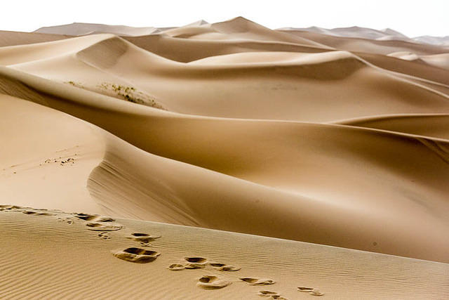 Gobi: Picture of sand dune.