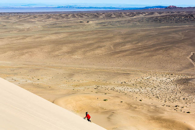 Gobi: Picture of Ruby on a sand dune.