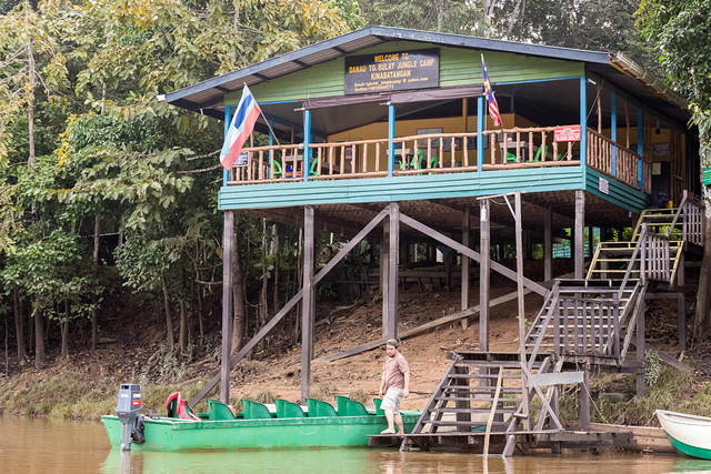 Picture of Tanjung Jungle Camp.