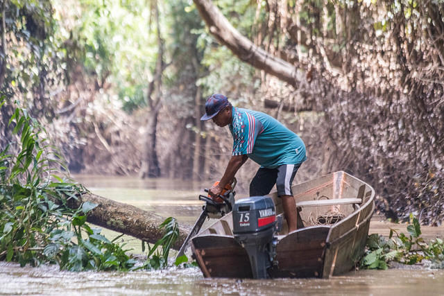 Picture of man cutting a tree with a chainsaw from a boat on a river.