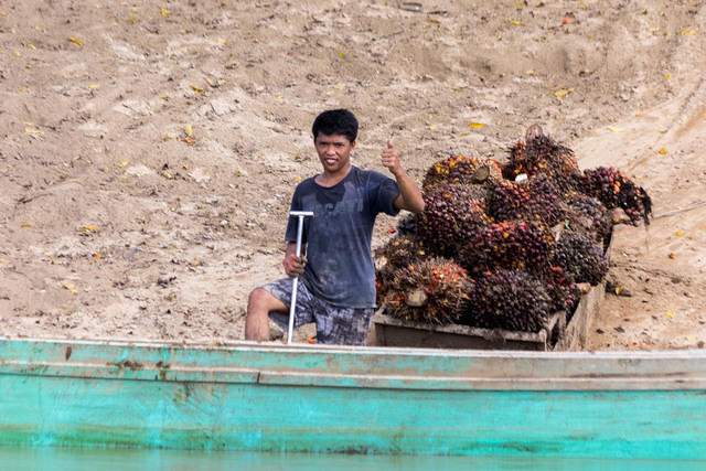 Picture of boy loading boat with palm oil.