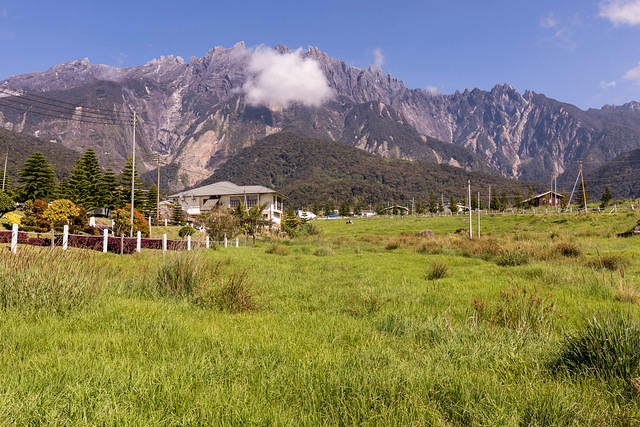 Picture of Kinabalu from Desa Farm.
